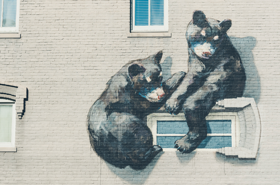 Bearly Illegal by Ernest Zacharevic