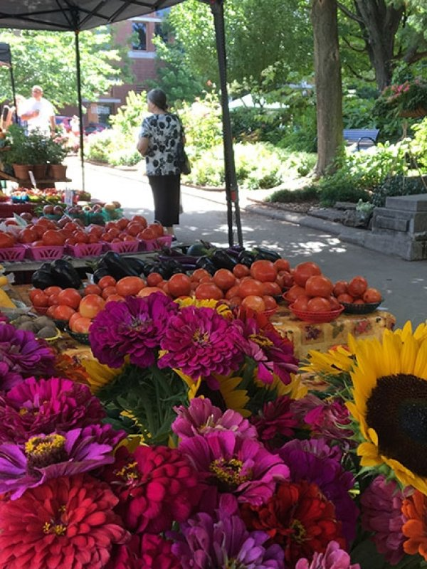 Fayetteville Farmers' Market returns to Downtown Square