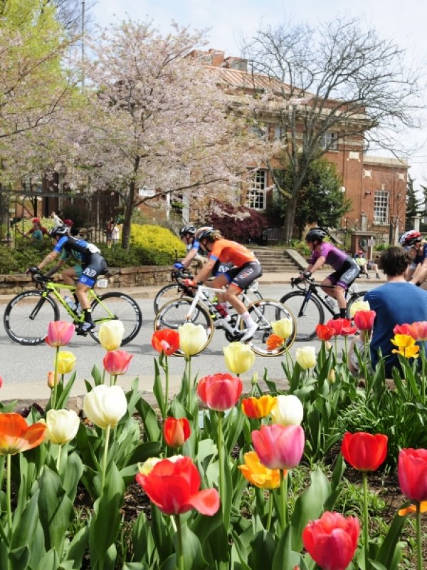 International Road Cycling Race Returns to Downtown Fayetteville
